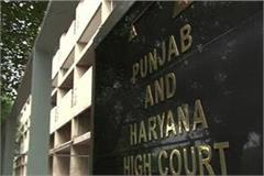 will file a petition in the high court