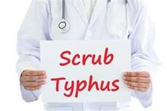 60 cases of scrub typhus positive in 3 months in himachal 1 death