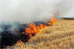 action on burning of wheat residue 35 cases and 27 thousand rupees