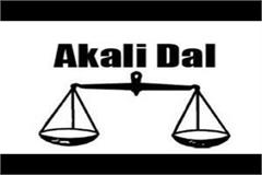 akali government leaves young leaders unemployed