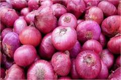 govt enhances export incentives for dried onions
