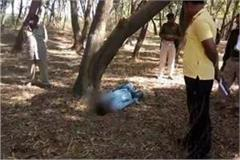 missing 8 year old child hanging from a tree fears of unnatural misdeed