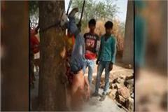 dabangs hit the young man with a tree and beat him badly death
