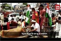 people sitting on bullock cart unexpected protest
