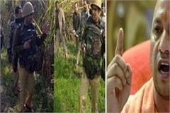 up 50 crooks killed in encounter