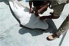 inside mosque 60 year old caretaker s neck slaughtered