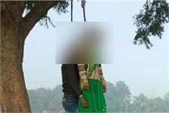 lover s twin tree hangs in a dead body