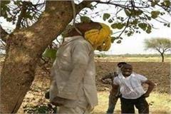 farmer sued for hanging in debt in etawah