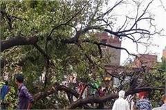 48 people die due to storm