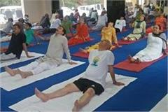 shanta kumar accepts fitness challenge of pm modi