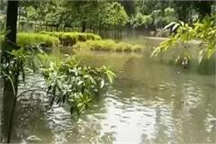 tau devi lal park submerged by minor breaks