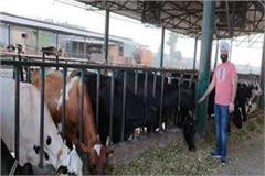biotech engineer couple made use of dairy business for youth