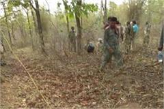 saf jawan s body found in satna forests after 48 hours of missing