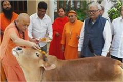 shivraj s minister on cow ministry