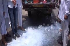 farmers protest by pouring hundreds of liters of milk on roads
