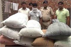 10 lakh ganja leaves being transported from orrisa to haryana
