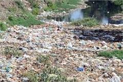pollution in budha naala