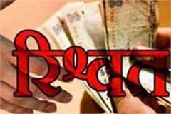 patwari demands rs 15 000 bribe filed case