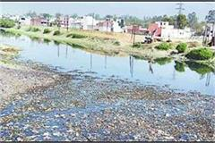 saharanpur mla and commissioner for cleaning the panhandoi river