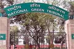 ngt damnationed the himachal government