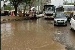 politics on water logging aam aadmi party palnted paddy on road