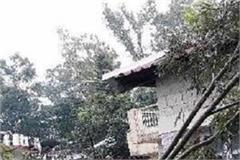 tree fall of fearfully 12 families vacant house