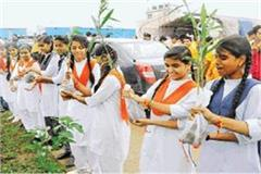 1111 medicinal plants planted by world record