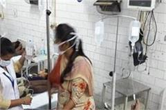 bilaspur fighting dengue virus