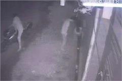 break the lock of 5 shops in a single night millions of theft