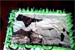 goat size cake