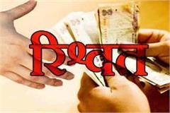 bachchanakhori lokayat caught in the school was caught