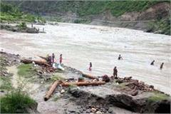 people catching wood in the sutluj on risk of life