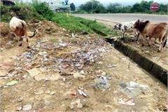 shown thumb to cleanliness campaign dirt spread where there is eaten