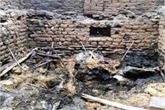 fire in cowshed 3 animal burnt alive