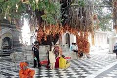 scarf case in vajreshwari temple passed since one and a half month