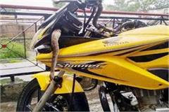 be alert in the rainy season snake can entrered anywhere