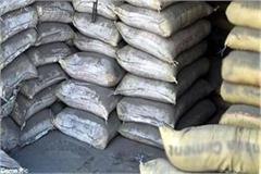 vigilance caught 133 bags of government cement from contractor s house