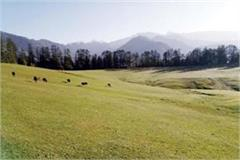 not one pebbles on shangchul mahadev s 128 bigha land