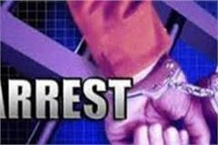 junk was heavy false information giver arrested in school