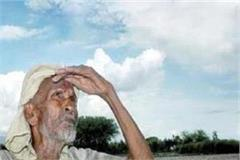 heavy loss of crops due to torrential rains