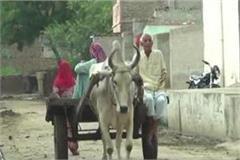two dozen children of dalits left school in mirchpur hisar