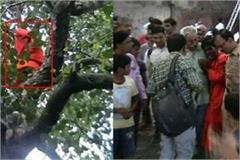 sadhu fear miss his bag thats why he climb on tree kanpur