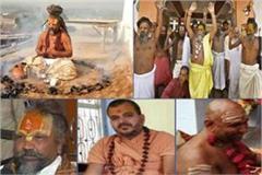 assembly election of madhya pradesh