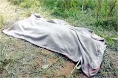 painful incident caused by wire planted in fields death of one one injured