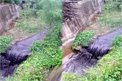 industries left the poison in rivers under cover of rain