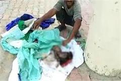 humanity shameless found dead in public toilet