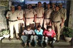 three arrested including 10 95 gram chita
