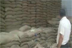 in the stock of rice and wheat in hafed warehouse