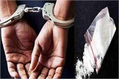 punjab youth arrested in shimla with 11 04 gram chitta
