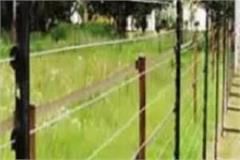 solar fencing changed the fortunes of farmers